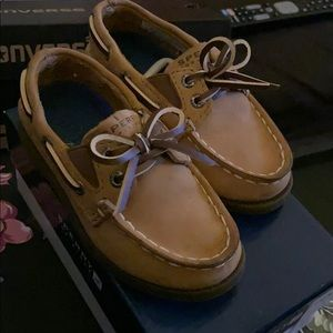 Toddler boys sperry top sider